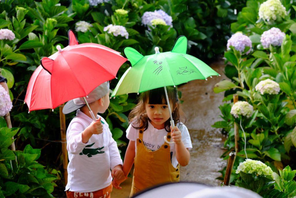 Дети под зонтиками